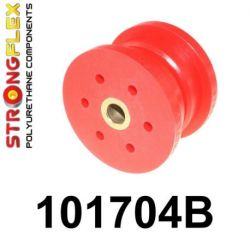 101704B: Rear differential - front bush