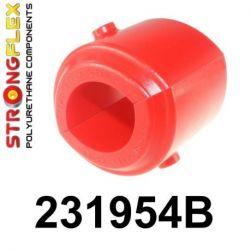 231954B: Rear axle bush