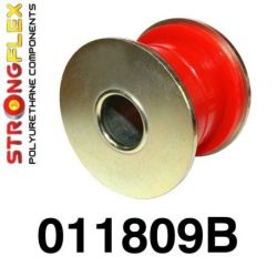 011809B: Front lower wishbone rear bush 47mm
