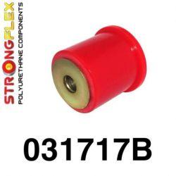 031717B: Rear diff mount - front bush