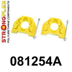 081254A: Engine left lower mount inserts SPORT